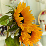 Sunflowers And Afternoon Tea Poster