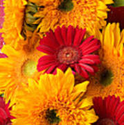 Sunflowers And Red Mums Poster by Garry Gay