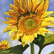 Sunflowers II Poster