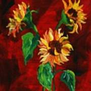 Sunflowers On Rojo Poster