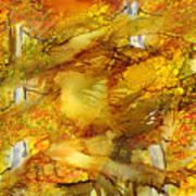 Sunlight Dancing In The Aspen Forest Poster