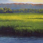 Sunlight On The Marsh Poster