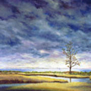 Sunlight On The Marshes 18x24 Poster