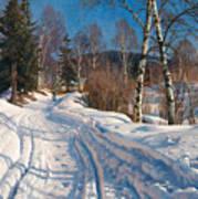 Sunlit Winter Landscape Poster