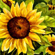 Sunny Floral Poster