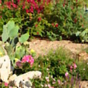 Sunny Rock Garden Poster