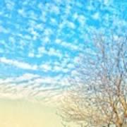 Sunny Tree Poster