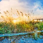 Sunrays On The Beach Poster
