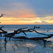 Sunrise At Driftwood Beach 1.4 Poster