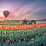 Sunrise, Hot Air Balloon And Moon Over The Tulip Field Poster