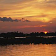 Sunrise Over Delacroix Island Poster by Medford Taylor