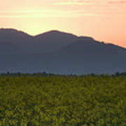 Sunrise Over The Kamnik Alps And Rapeseed Poster
