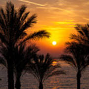 Sunrise Over The Red Sea Poster by Jane Rix