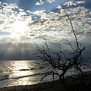 Sunrise Prayer On The Beach Poster