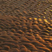 Sunrise Sand Patterns At Hunting Island Poster