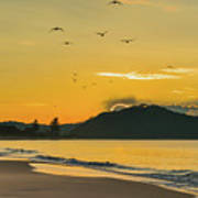 Sunrise Seascape With Mountain And Birds Poster