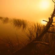 Sunrise Silhouettes Poster
