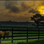 Sunrise With Horses Poster