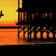 Sunset At Raft With Bird Poster