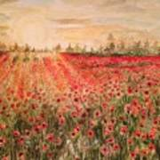 Sunset By The Poppy Fields Poster