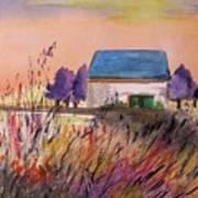 Sunset Grasses Poster by John Williams