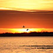 Sunset In Orange Poster
