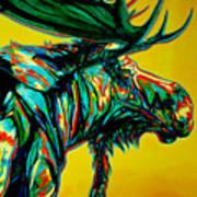 Sunset Moose Poster