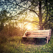 Sunset On A Wooden Bench Poster