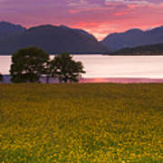 Sunset On The Ardgour Mountains Poster