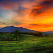 Sunset Pasture Poster
