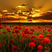 Sunset Poppies The Bbmf Poster