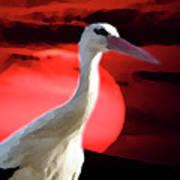 Sunset Stork Poster