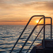 Sunset Swim Poster