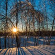 Sunset Winter Shadows Poster
