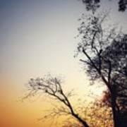 Sunset3 Poster