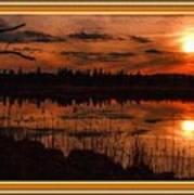 Sunsettia Gloria Catus 1 No. 1 L B. With Decorative Ornate Printed Frame. Poster