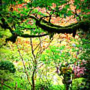 Sunshine In The Garden Poster