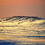 Surfers Gold Poster