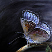 Surreal Common Blue Poster by Tanya Byrd