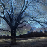 Surreal Fantasy Fairytale Blue Starry Trees Landscape - Fantasy Nature Trees Starlit Night Wall Art Poster