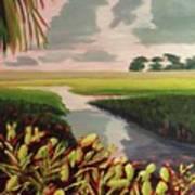 Suwanee River Delta Poster