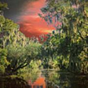 Swamp 1 Poster