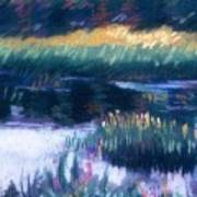 Swamp Flowers Poster