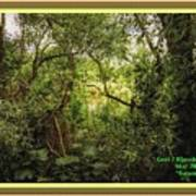 Swamp L A With Decorative Ornate Printed Frame. Poster