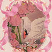 Swan In Pink Card Poster