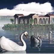 Swan Island Poster