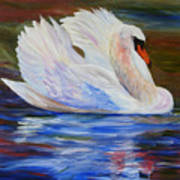Swan Wildlife Painting Poster