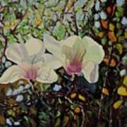 Sweet Magnolias Poster