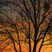 Sweet Sunset Poster