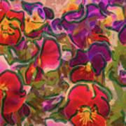 Sweet Viola Poster